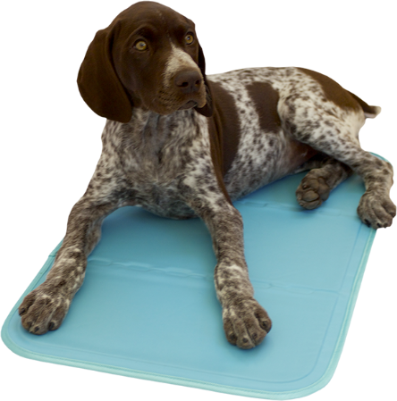 AniMat Dog Cooling Pad