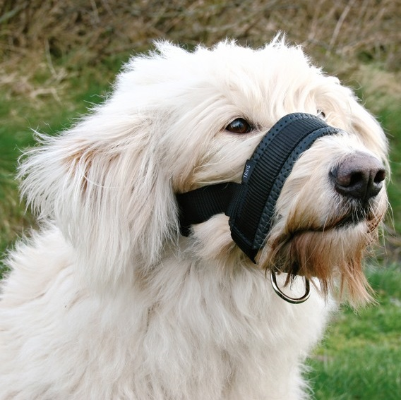 Dog Muzzle Loop, Soft Nylon with D Ring | No Bite Muzzle