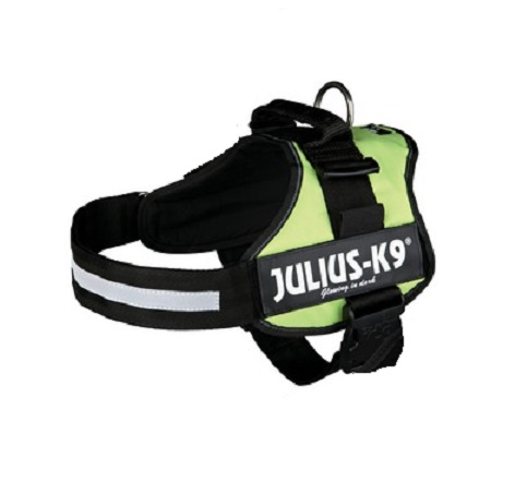 Lime Green Julius K9 Harness | Power Dog Harnesses