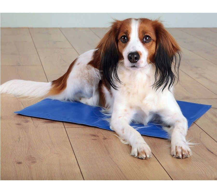 Rosewood Chillax Dog Cool Pad  | Cooling Pet Gel Mat